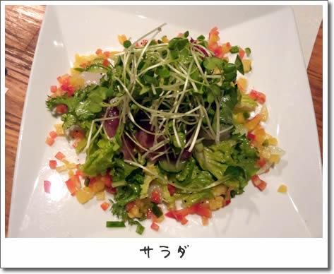 2_サラダ.jpg