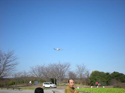 s-さくらの公園2 005.jpg