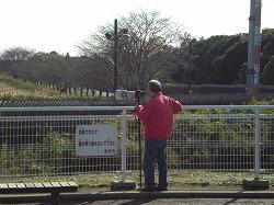 s-さくらの公園2 011.jpg