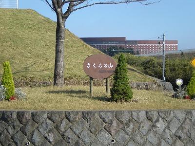 s-さくらの公園2 015.jpg