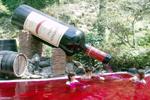 wine[1].jpg